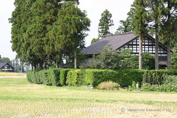 カイニョ(屋敷林)に囲まれたアズマダチ(切妻造り)の屋敷