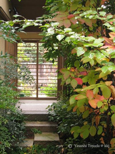 南禅寺の家。紅葉前11月の様子。