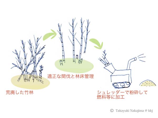 荒廃竹林の整備