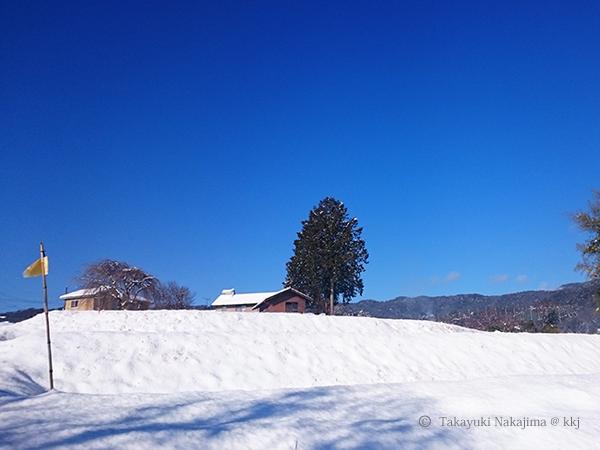 平成29年1月 玄関先からの風景
