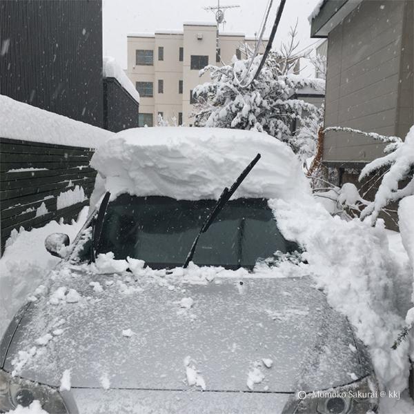 12/23 の朝 再び雪かきにげっそり 今年に入って鳥取の方でも豪雪がありましたね。大変さお察しします。